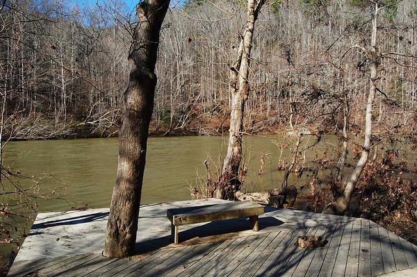 Journal Site 217: Angel Falls Rapids Trail, Big South Fork, Oneida, TN - Nov 24, 2011
