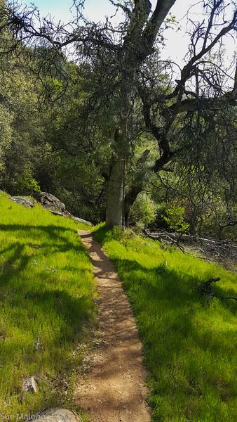 Hiking Yuba State Park (9 of 30).jpg