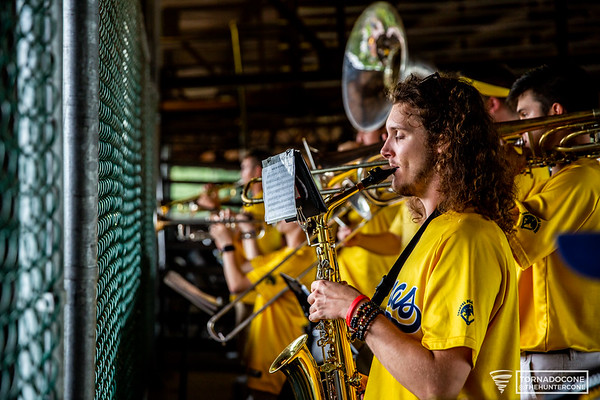2019 Savannah Bananas band