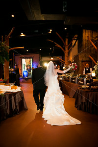 Jessica & Chace • Reception
