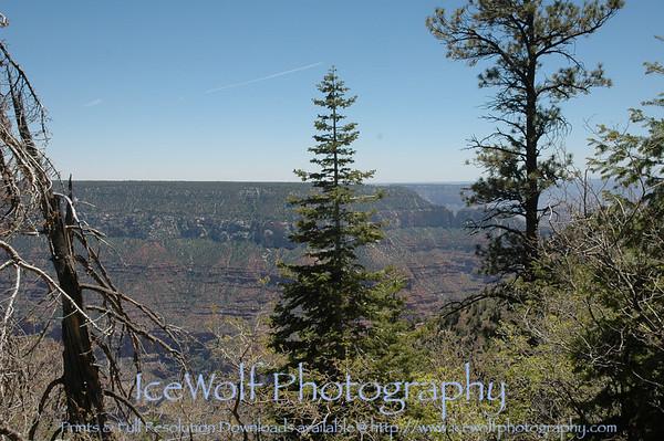 Grand Canyon National Park: North Rim - June 1-2, 2008