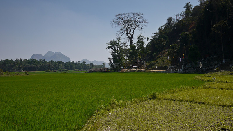 Rice paddies and karst rocks in the countryside near Hpa-An, Burma.