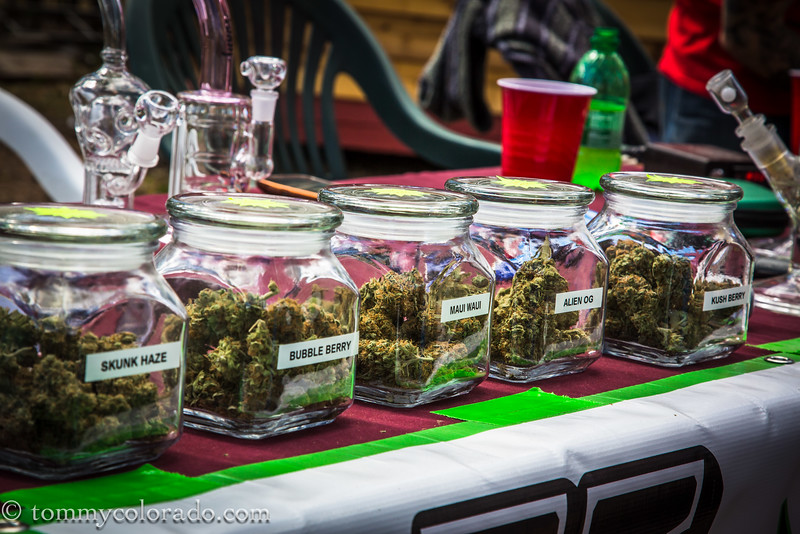 cannabiscup_tomfricke_160917-2242.jpg
