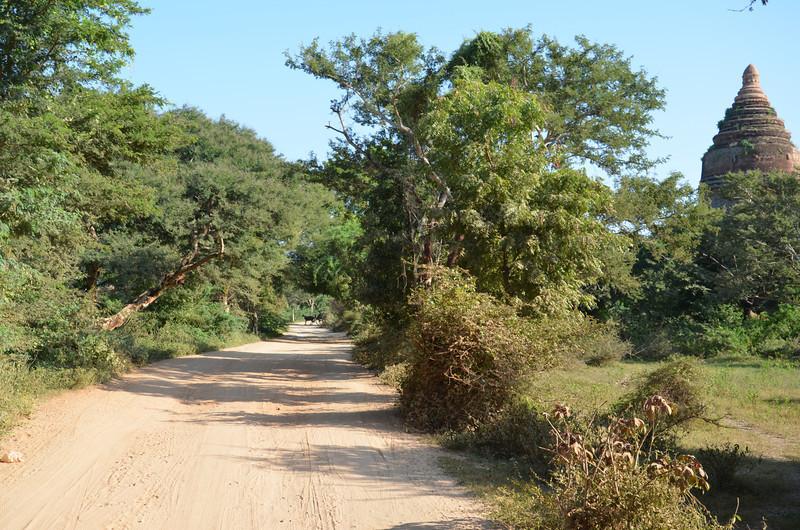 DSC_4012-bagan-back-road.JPG
