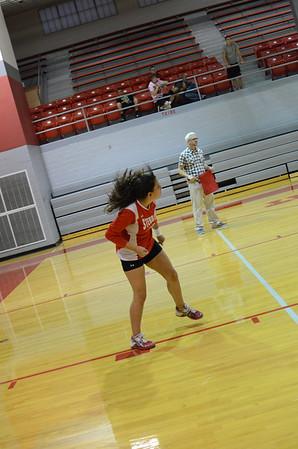 Girls Volleyball 2013