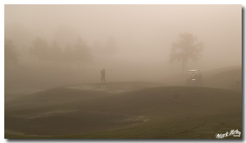 35. Foggy Morning, by camon crow, E-1, 8/26/07.