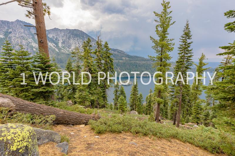 San Fran_Lake Tahoe Trip 2017-161-12.jpg