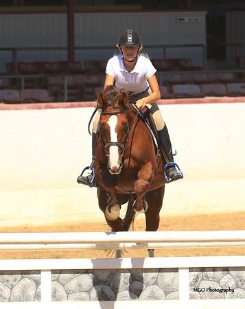 Santa Barbara County Riding Club Hunter/Jumper Schooling Show September 2018
