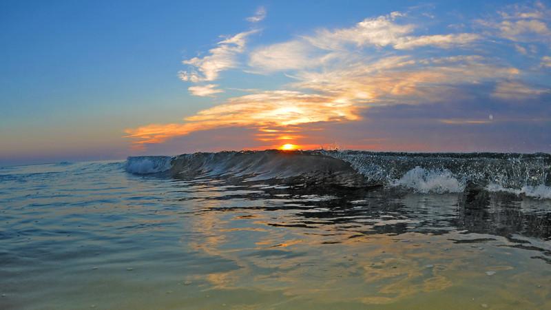 SCOPe_Huntington Beach State Park OCT 2012_8.jpg
