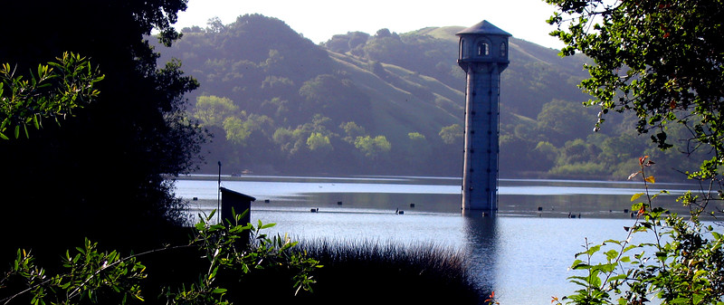Rez Tower Through Vegetation.jpg