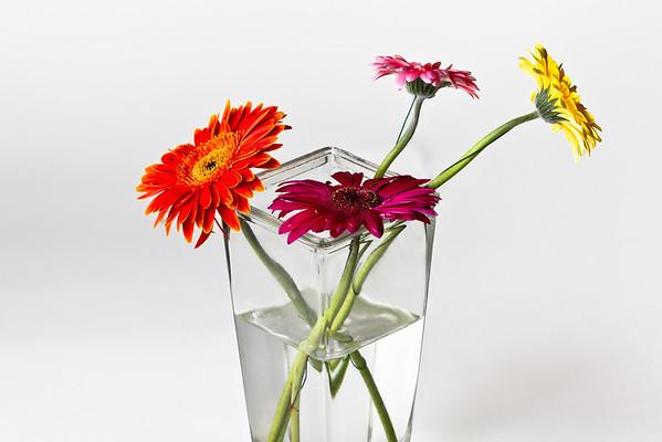 Lindsie's Flowers