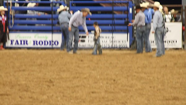 2018 PRCA Rodeo Mutton Busting
