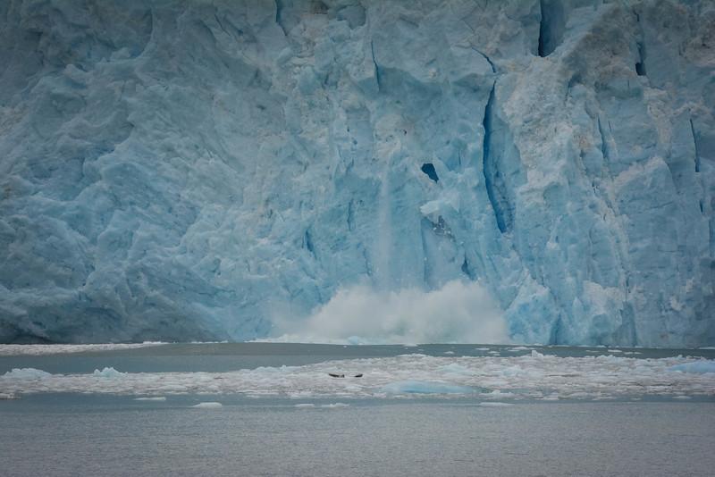 Kenai-Fjords-99.jpg