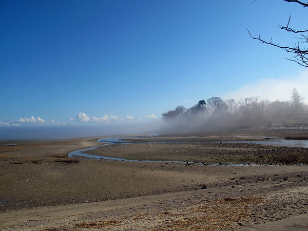 Fog at Southport Beach