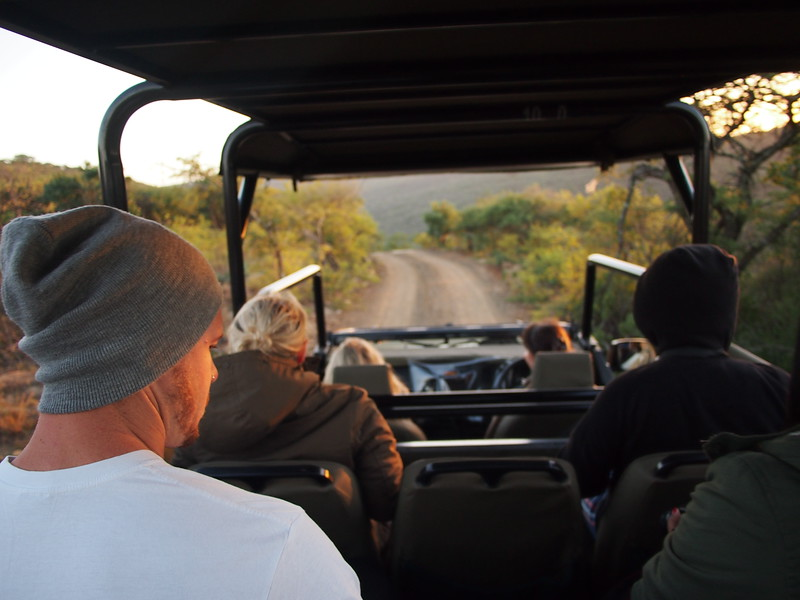P5056339-on-safari.JPG