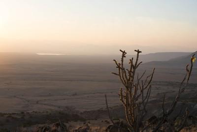 Cerros del Rio Volcanic Field
