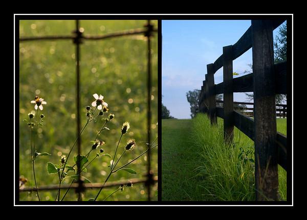 Farms
