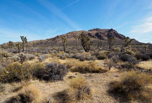 Kessler Peak in Mojave Preserve  11-19-18