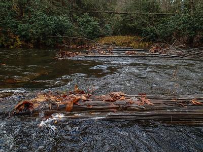 2013-11-02 Cranberry River