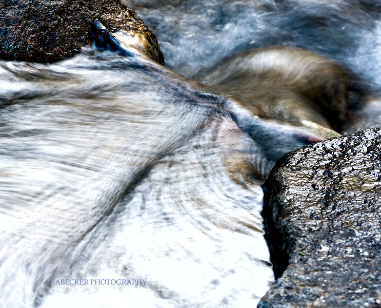 Water Spine.jpg
