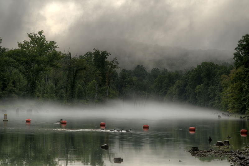 Fog covers the river on the South Fork of the Holston River at the Osceola Island & Weir Dam Recreation Area at South Holston Lake in Bristol, TN on Friday, July 25, 2014. Copyright 2014 Jason Barnette