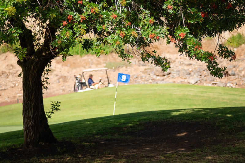 Golf Adeje_20191024_9688.jpg
