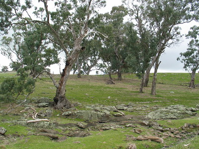 Redesdale