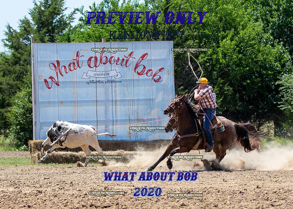 What About Bob 2020 Pasture Roping