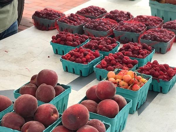 farmersmarket3071118