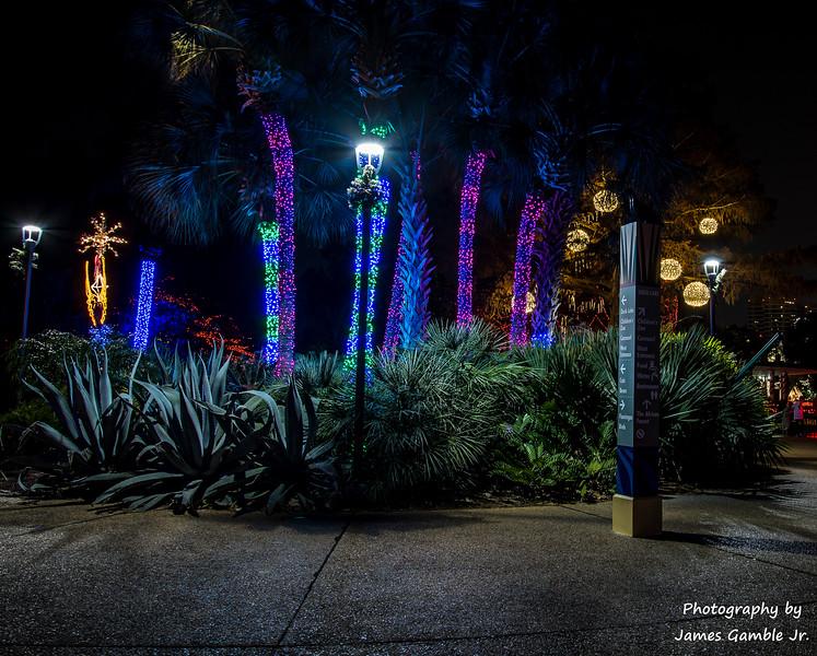 Houston-Zoo-Lights-3006.jpg