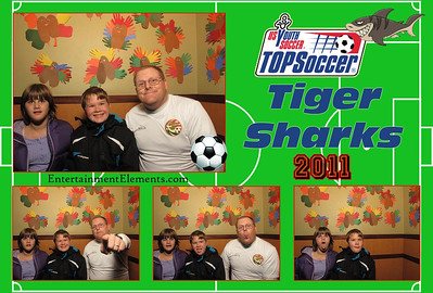 TOPSoccer 2011