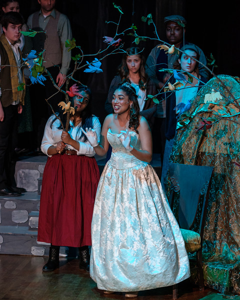 2018-03 Into the Woods Performance 1464.jpg