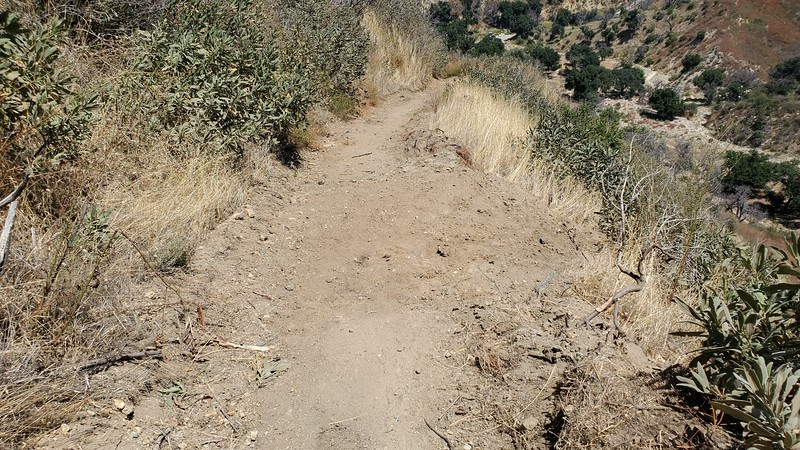 20190810060-Los Pinetos trailwork.jpg