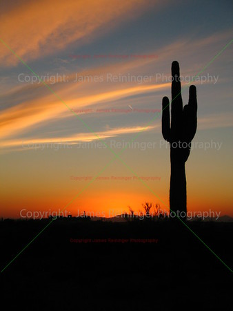 Arizona's Natural Landscapes