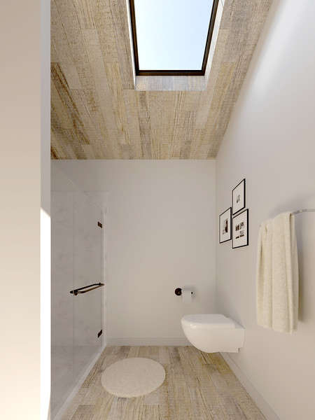 velux-gallery-bathroom-197.jpg