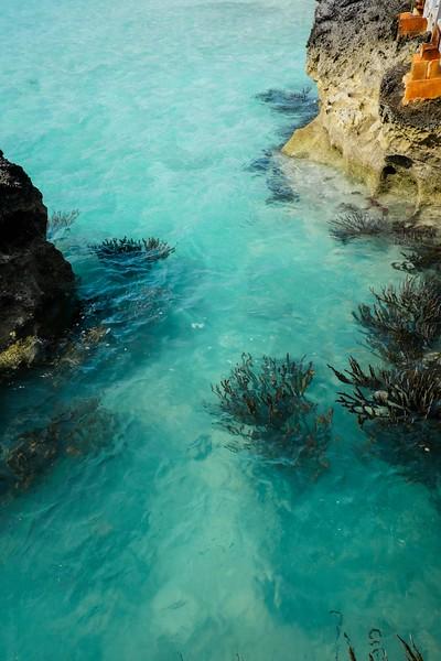 Bermuda-20.jpg
