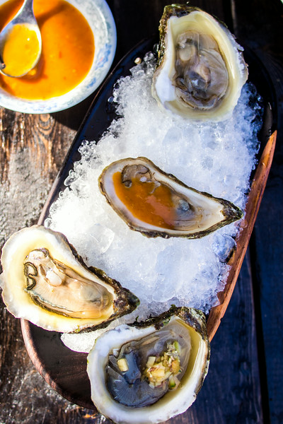 oysters shucked on ice 2.jpg