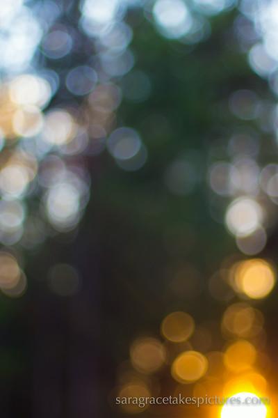 tumalo-1080615.jpg