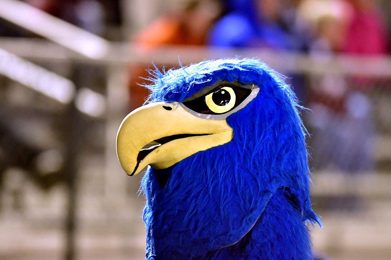 10/5/2018 Mike Orazzi | Staff The St. Paul Catholic High School Falcon during Friday night's football game in Bristol.