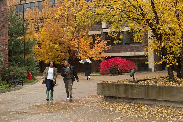 11/19/18 Fall Campus Scenics