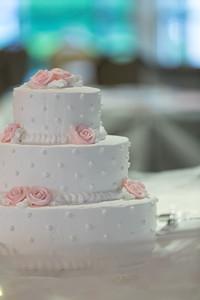 Reception The Cake- Danielle & Andy Bruno Wedding Photography- Holy Trinity Westfield, MA/ Chez Josef Agawam, Mass.