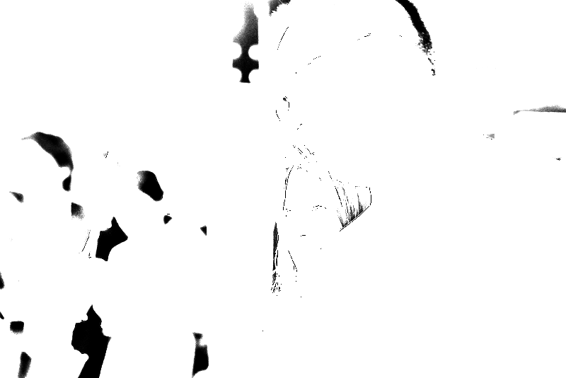 DSC05811.png