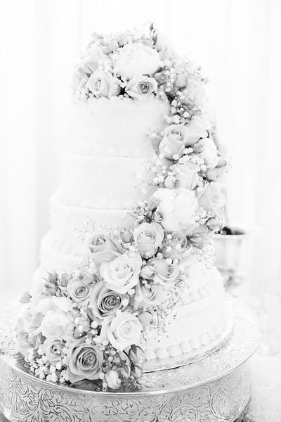 0811_Josh+Lindsey_WeddingBW.jpg
