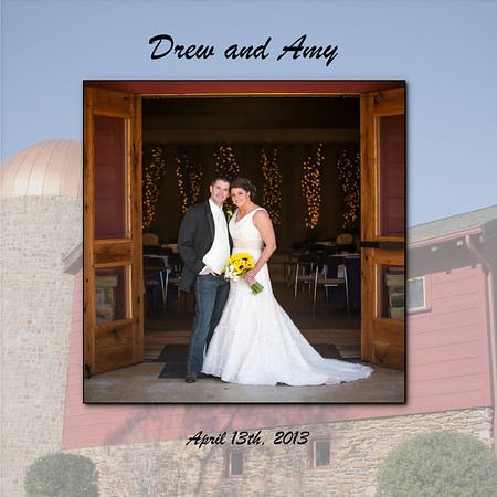 Amy and Drew's Album