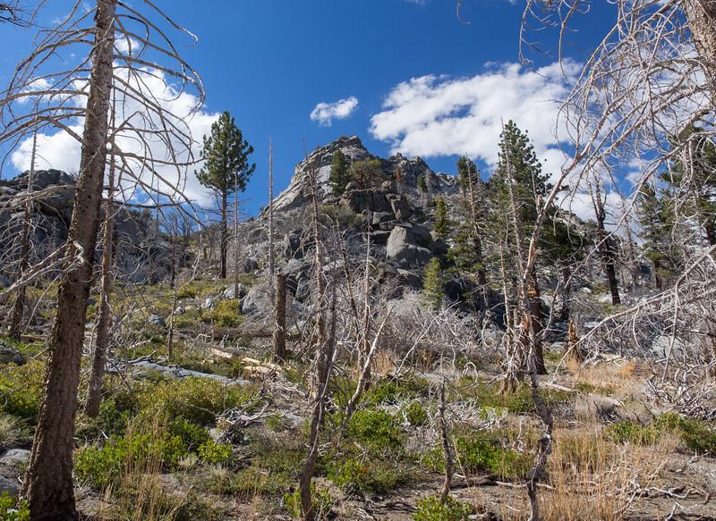 Looking back at Crag Peak.