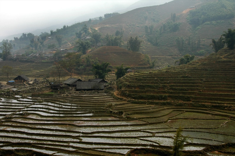 Hills and Terraces - Sapa, Vietnam