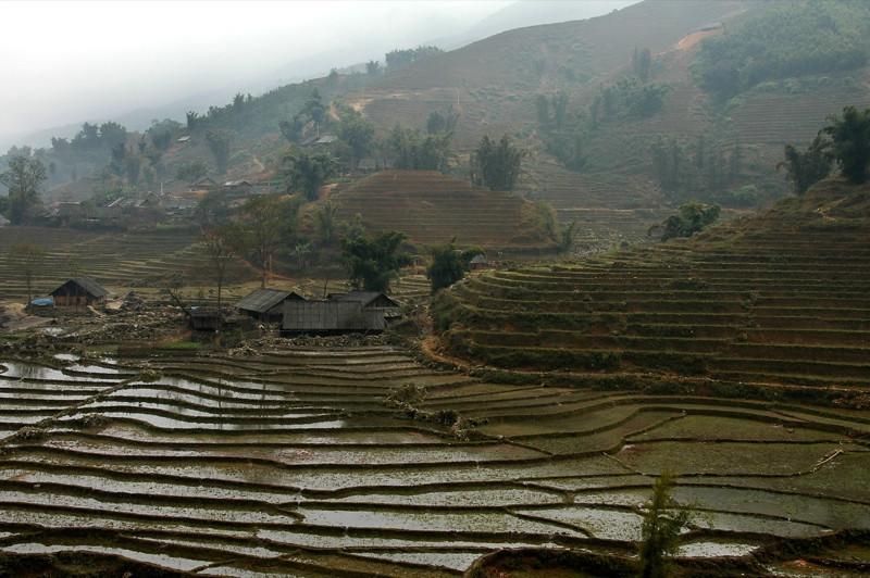 Hills and Terraces - Sapa, Vietnam