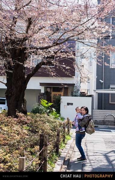 Japan_Tokyo_Apr_2016-143.jpg
