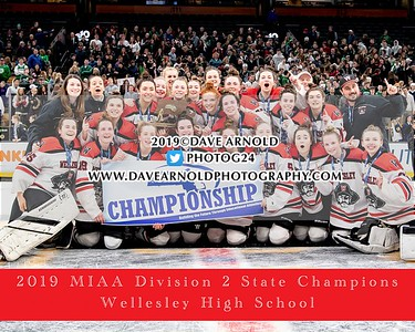3/17/2019 - MIAA Girls D2 State Final - Notre Dame vs Wellesley