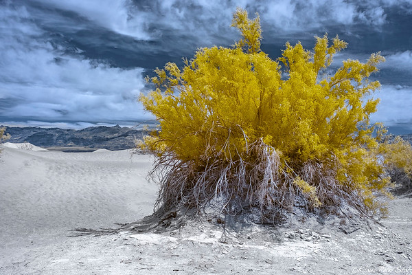 10- Drive to Panamint Springs, Death Valley (IR)
